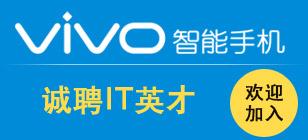 维沃移动通信有限公司(vivo智能手机)
